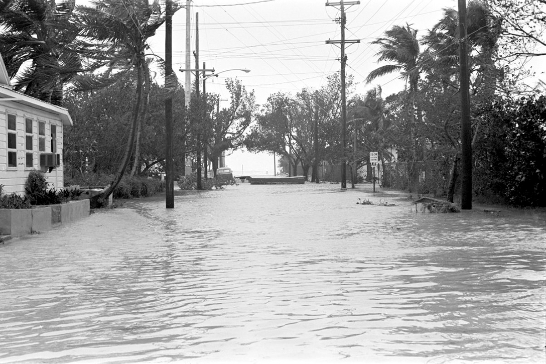 Key West street flooding