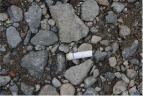 Dewey-Hagborg collected this cigarette butt on Myrtle Avenue in Brooklyn, NY. The DNA she extracted from it revealed that the smoker is male, of Eastern European descent, and has brown eyes.