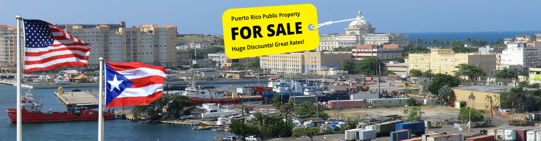 Puerto Rico is out of cash. A federally appointed board wants to put it up for sale.