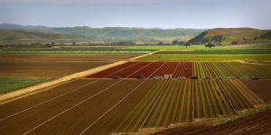 Is California's agricultural heartland in danger of irreparable contamination? Photo credit: Malcolm Carlaw / Flickr