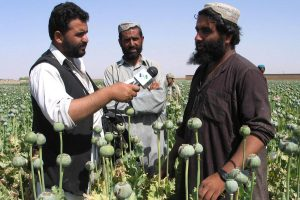 VOA reporter interviewing Afghan poppy cultivators. Photo credit: VOA / Wikimedia