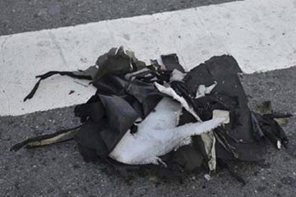 Boston Bombing Shredded Backpack