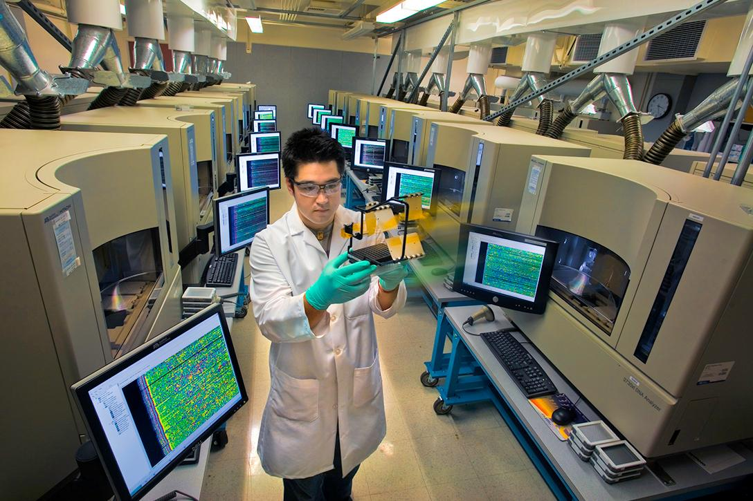 Researcher with 3730XL DNA analyzers