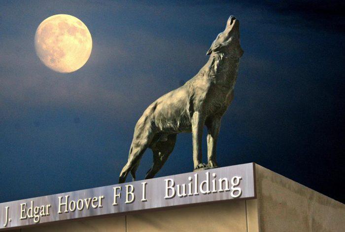 FBI, Lone Wolf