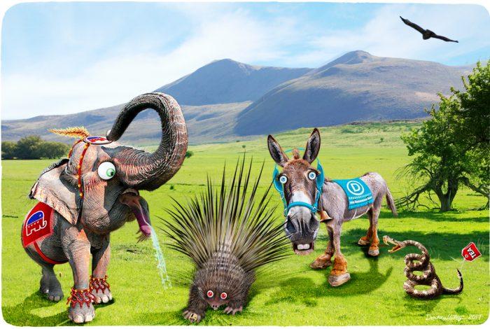 elephant, porcupine, donkey, snake