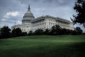 Capitol Lawn