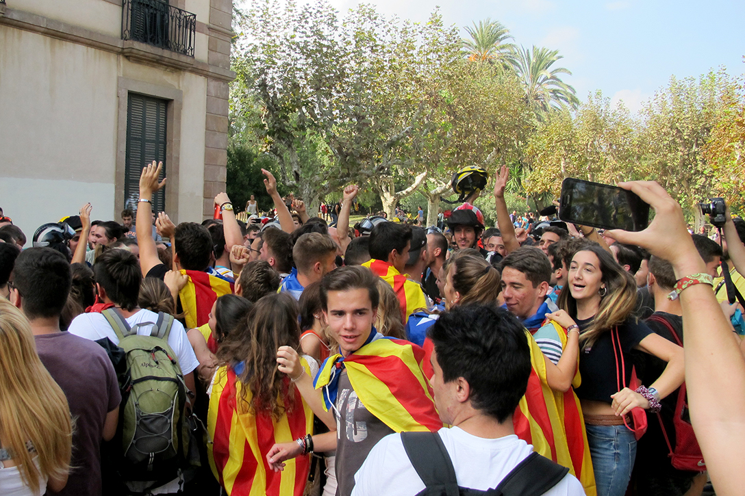 Crowd of Protesters, Barcelona