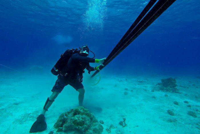 diver, undersea cables