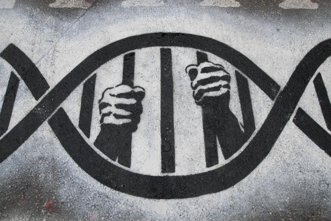 DNA, Rapid DNA