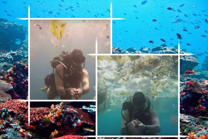 Bali, coral reef, plastic, pollution
