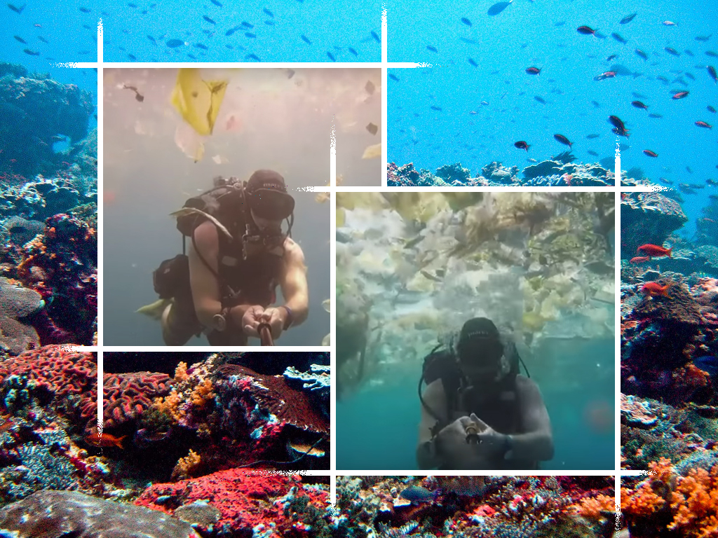 Bali, coral reef, plastic, pollution