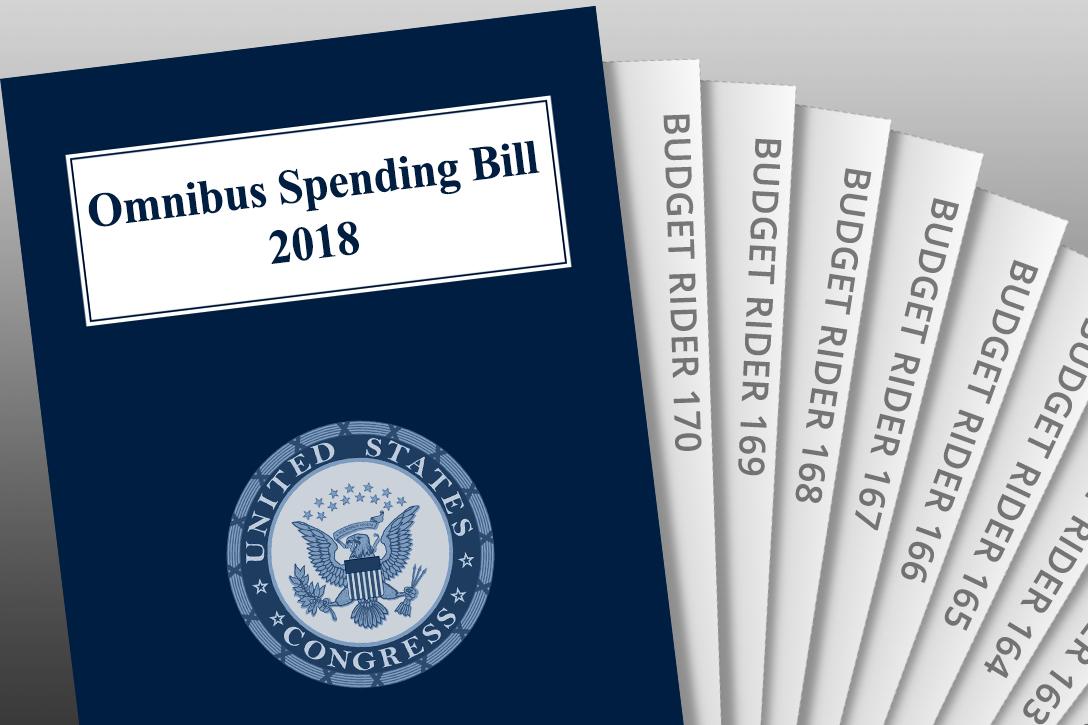 US Budget, Budget Riders