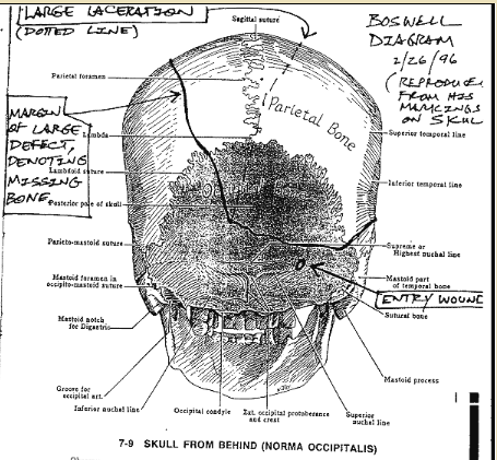 Boswell, skull diagram