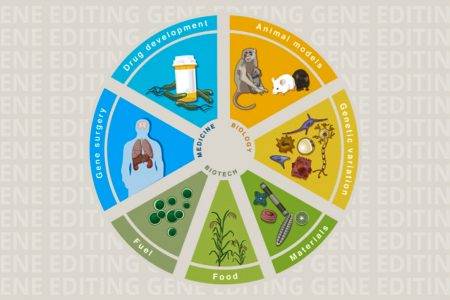 Applications of Genome Engineering
