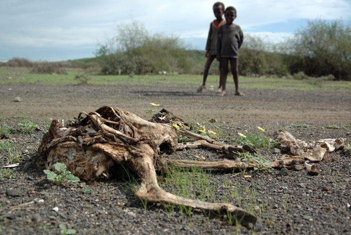Ethiopia, drought