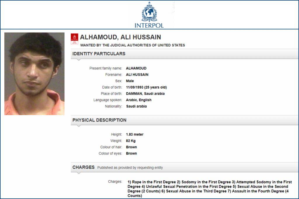 Ali Hussain Alhamoud, Interpol