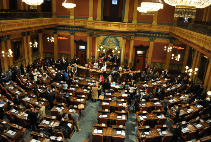 Gun laws, Michigan House Republicans
