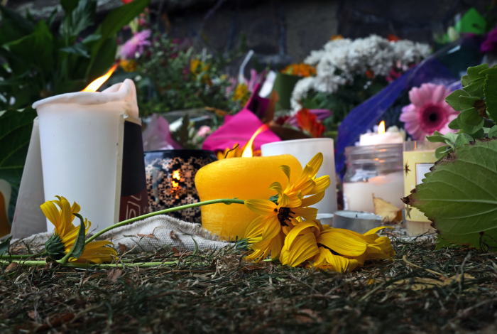 Mass shootings, U.S., prevention