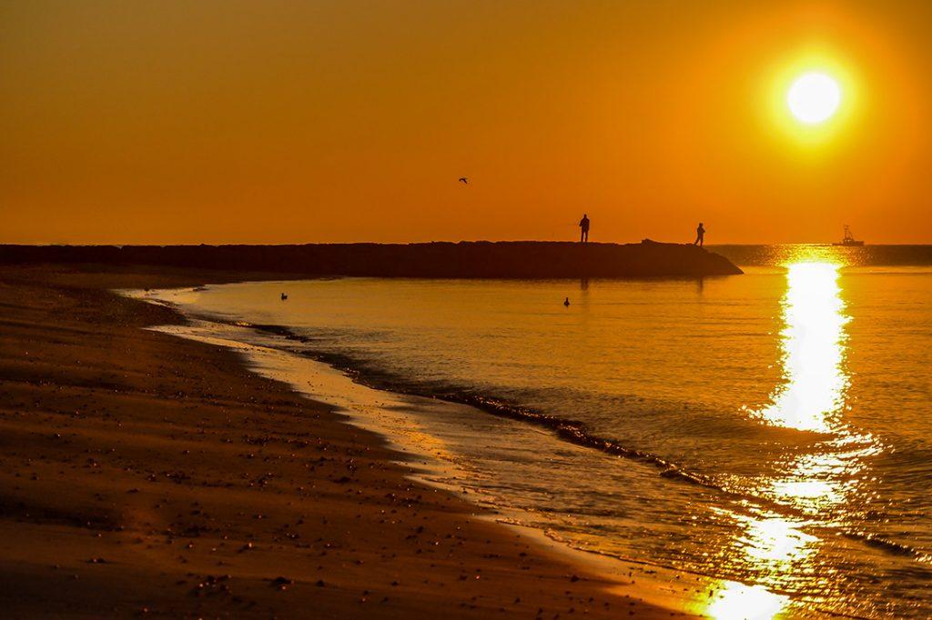 Seagull Beach, Cape Cod