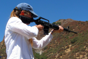 AR-15, Colt, gun history