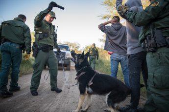 US Border Patrol, immigration