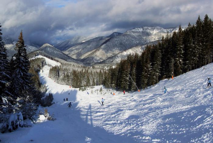 climate crisis, Alpine skiing