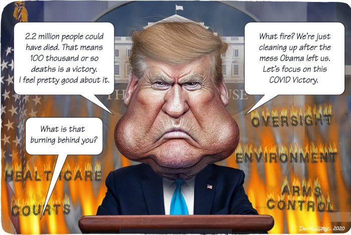 Donald Trump, COVID-19, administrative state