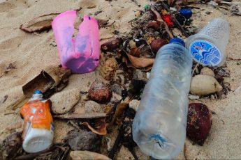 degradable plastic, bottles, plant-based