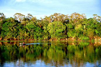 Amazon rainforest, climate change, threats