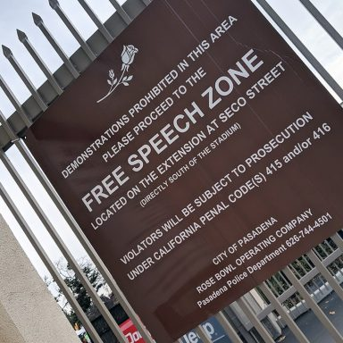 The High Cost of Free Speech
