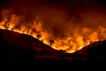 climate change, California fires