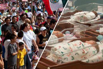 immigrants, babies