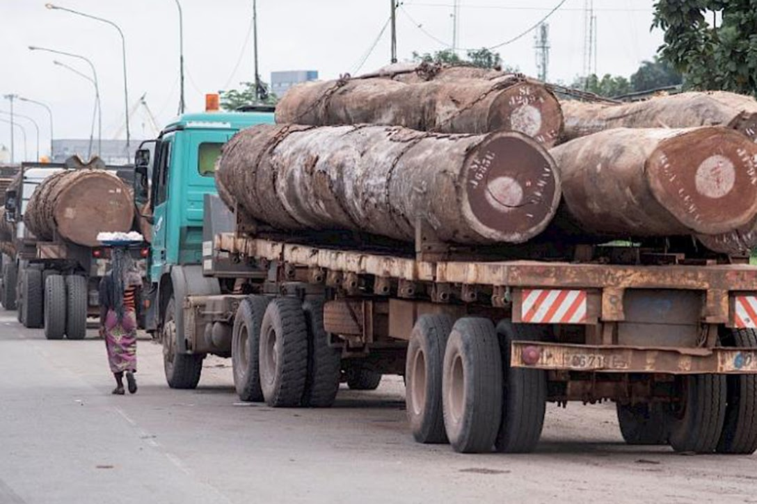 illegal logging, Madagascar