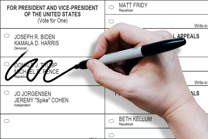Sample ballot, 2020