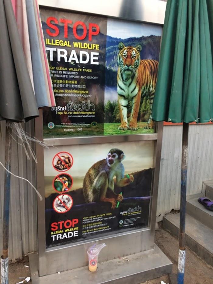 Wildlife trade, poster