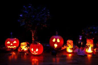 Halloween, 2020, fright