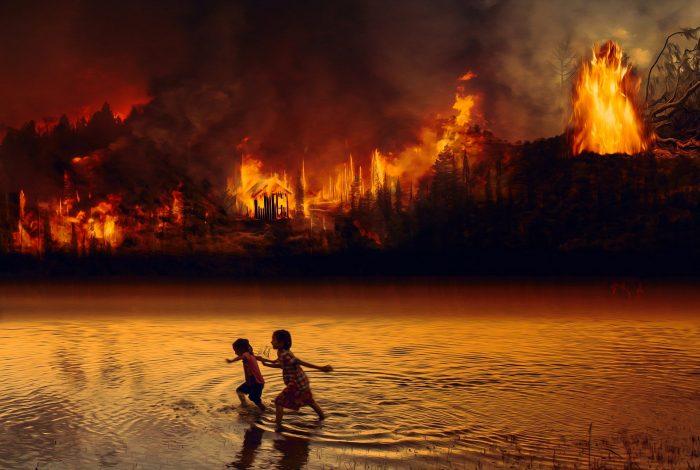 climate change, Amazon rainforest, savannah, study