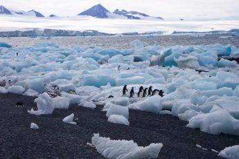 climate change, Paris Agreement, US withdraws