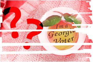 Georgia, voter