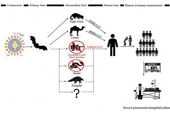 interspecies transmission routes, SARS-CoV, MERS-CoV