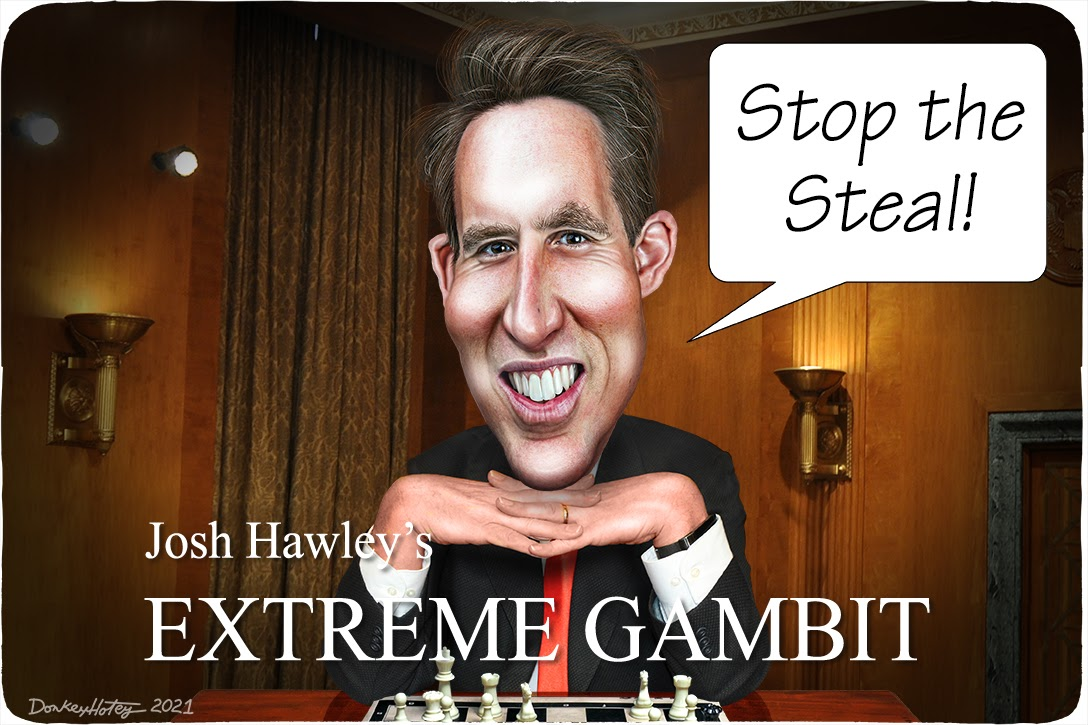 Josh Hawley, Donald Trump, Stop the Steal