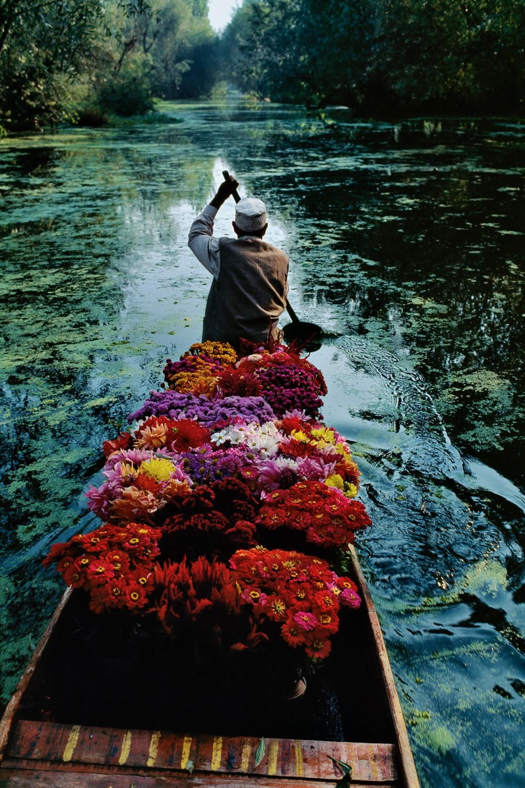 Kashmir, 1996, flowers, boat