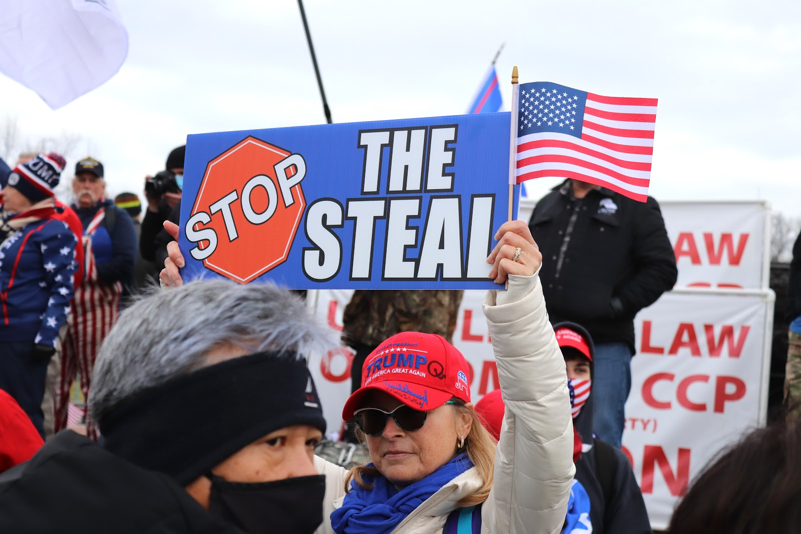 Stop the Steal, Capitol, protesters