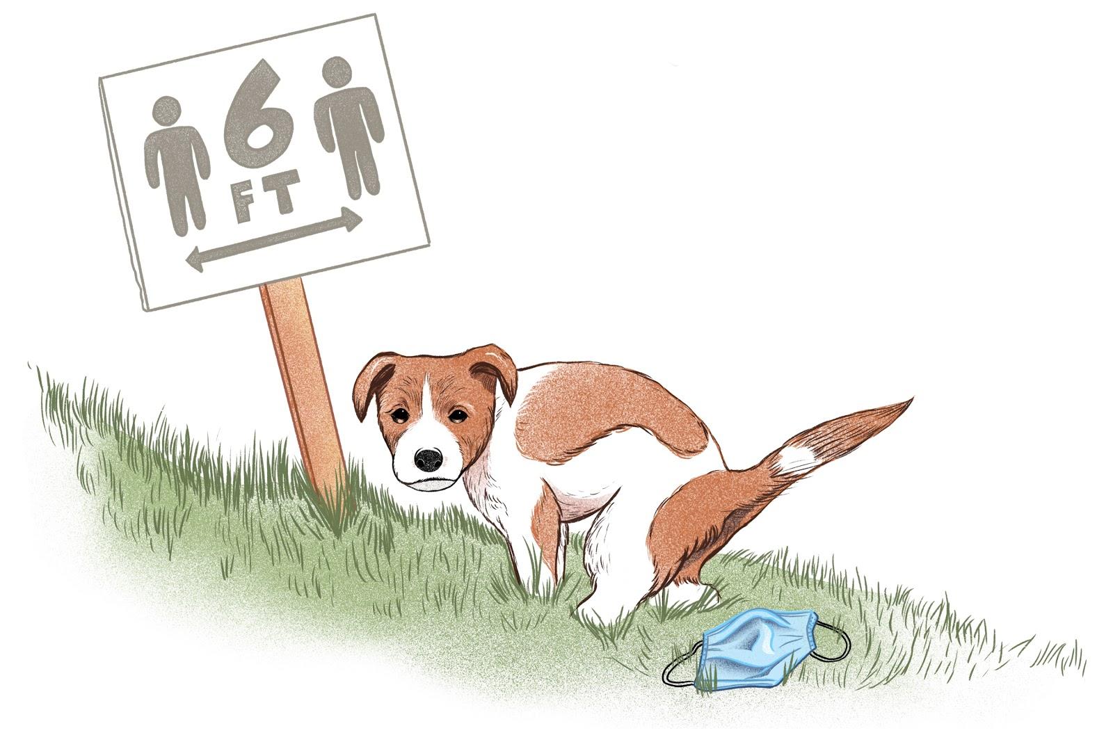 Crappin' Dog