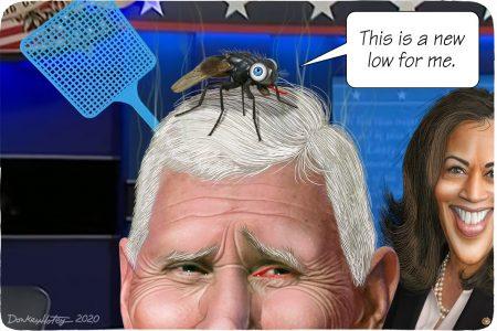 Vice President, debate, Mike Pence, Kamala Harris, fly