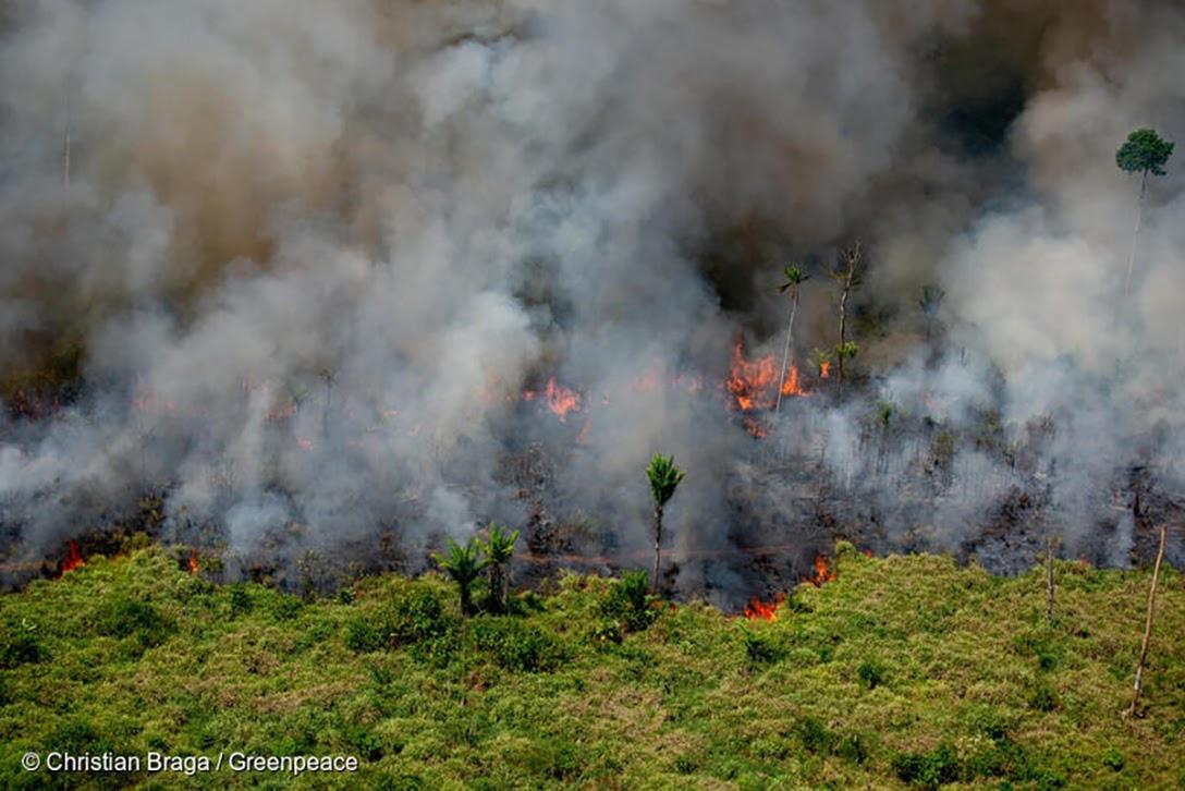 Fire, Lábrea, Amazonas