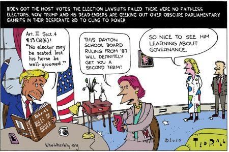 Donald Trump, 2020, election