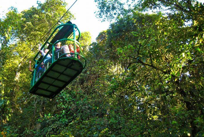 deforestation, coffee pulp, growth boost, Costa Rican rainforests