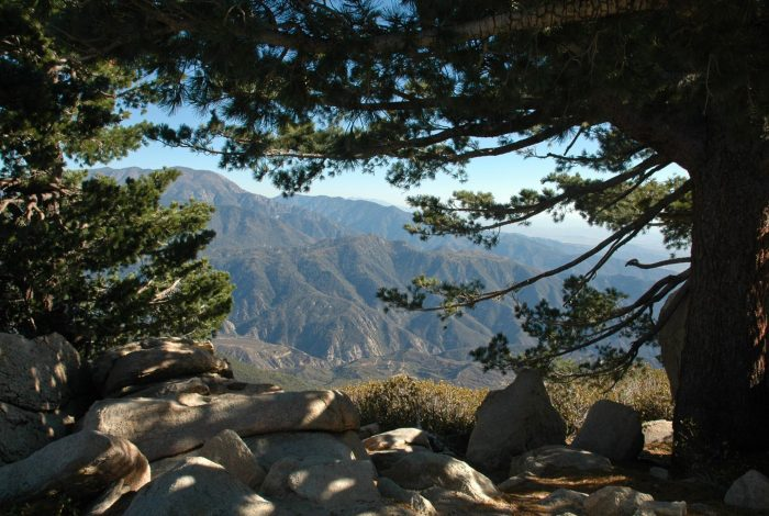 Nestlé, bottled water, San Bernardino forest, order, drought, climate crisis