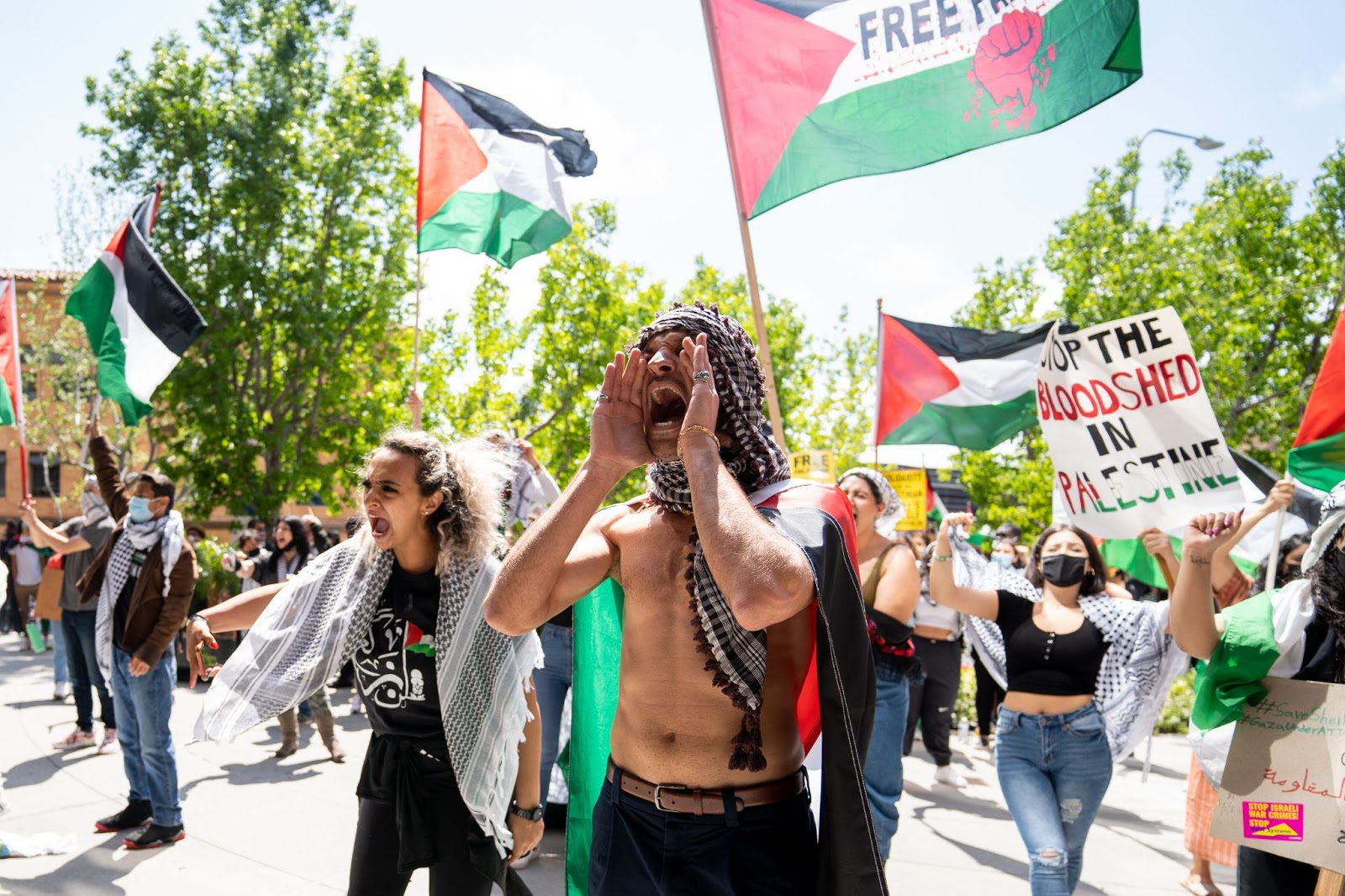 Palestinians, yell, consulate